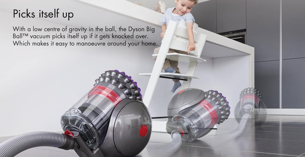 Dyson Big Animal 2 Picks itself up