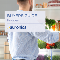 Buyers Guide Fridges