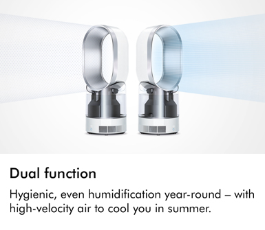 Dyson Dual Function