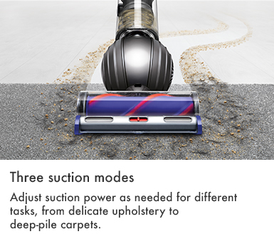 Dyson Small Ball Allergy Three Suction Modes