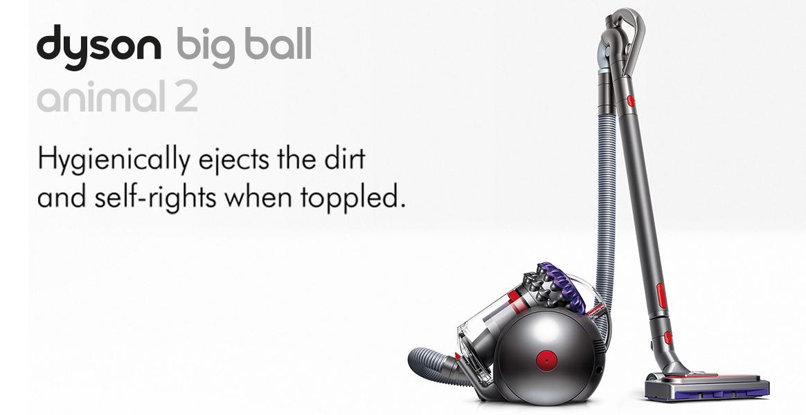 Dyson Big Ball Animal 2